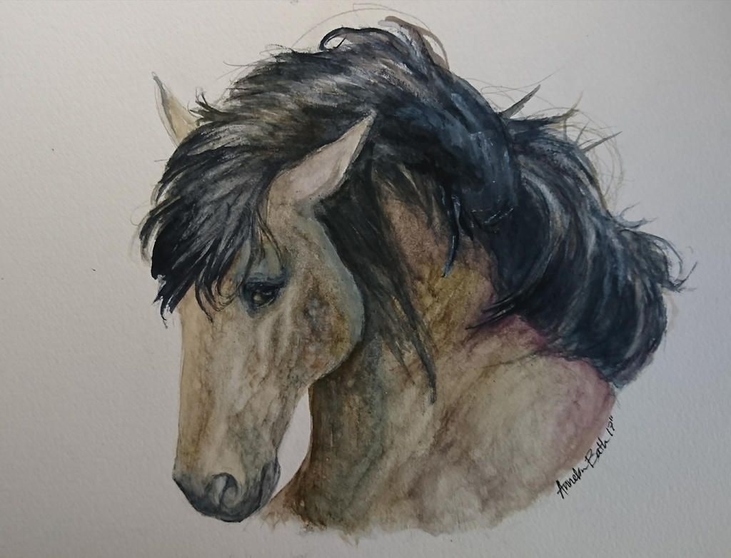 Buckskin mustang in hard watercolors by QueenAnneka