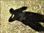 self shadow.