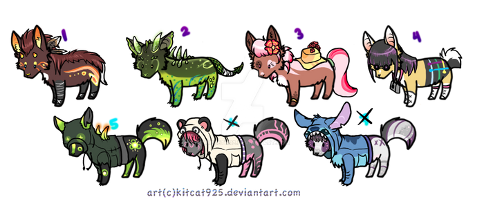 Canine Adopts -one left-