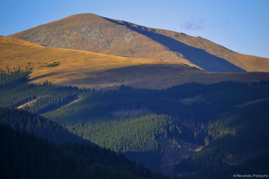 Southern Carpathians III by AlecsPS