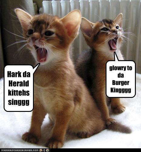 WTFUR: Da Herald Lolcats Sing by WWhiteSShadow