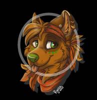 Scarfs (Awi -profile picture)