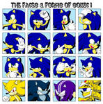 The Faces n' Forms of Sonic