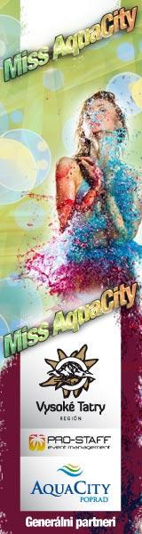 Miss AquaCity 2012 casting banner ad
