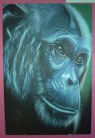 gorilla by magaggie