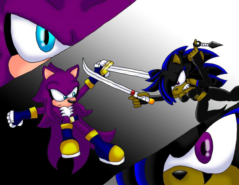 Sword Of The Hedgehog 2 by Seltzur-The-Hedgehog on deviantART