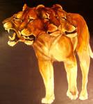Lionessess