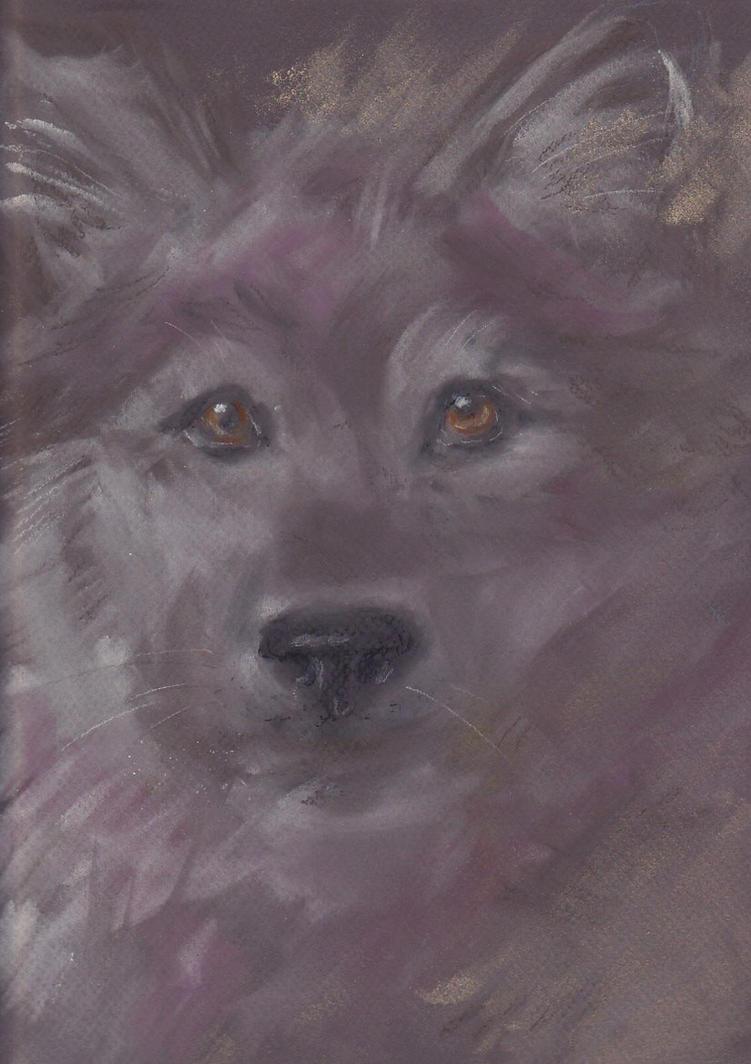 Pastel Wolf by MinamiTakahashi