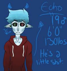 Echo by ChippyCho