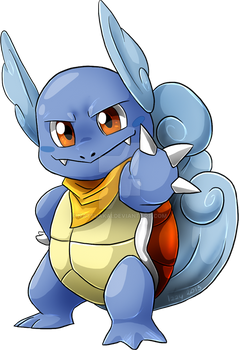 The leader of Team Wartortle