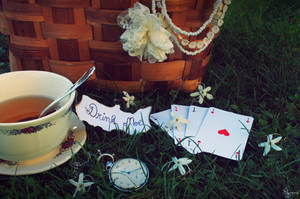 Alice in wonderland by TakeTheMoment