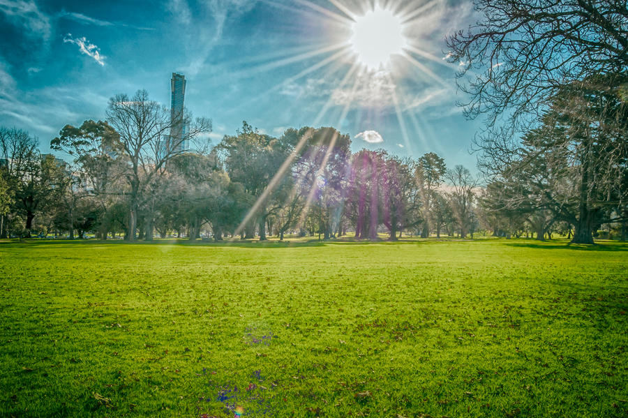Park by dkokdemir