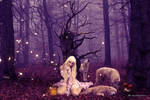 Wombflash forest