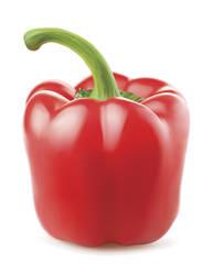 Bell Pepper Vector (Unimaginative Title)