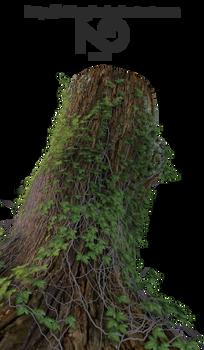 Tree Stump 2 [Render]