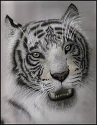 Sketched Face by PriscillaHavenaar