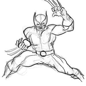 Wolverine Digital Practice