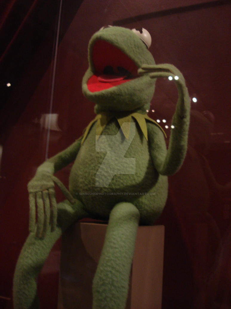 Kermit at the Smithsonian by SinboundPhotography