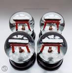 : torii foxes batch :