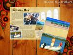 Bahama Bay Boats