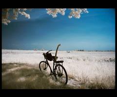 Alone by Aerobozt