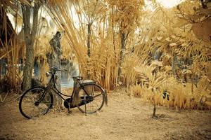 My bike by Aerobozt
