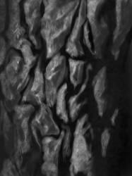 MACRO SKETCHING: TREE BARK by devchitap