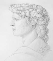 Profile study of David by teya-iris