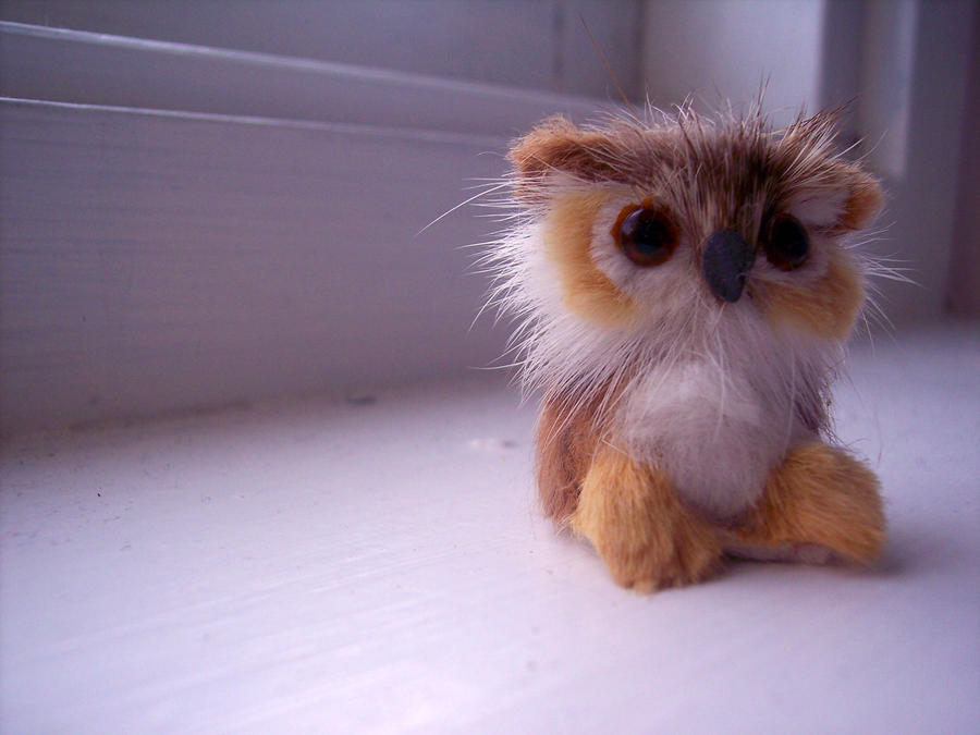 Owl by CupCakeOwO