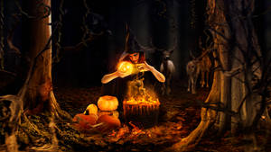 Halloween nigth