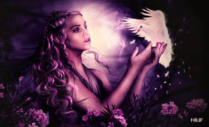 My beautiful dove by HILIF