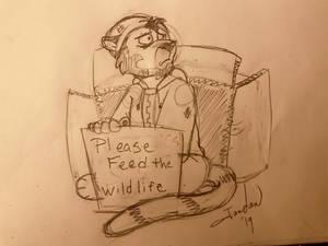 Feed the Wildlife