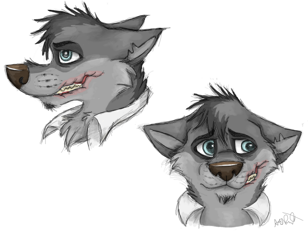 Scarred Character Concept: As Wolf by RaiynClowd on DeviantArt