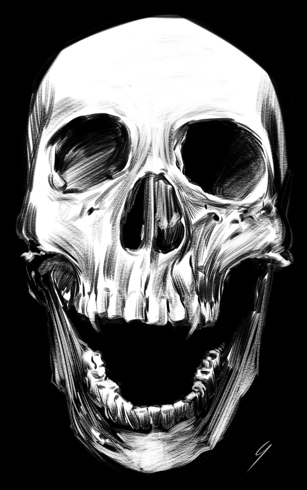 Skull by MGuevara