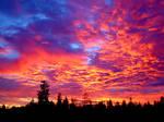 red sky by kozlik
