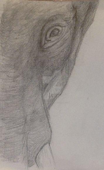 Elephant by WingsOfTheMusicWolf