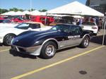 1978 Corvette 25th Anniv model