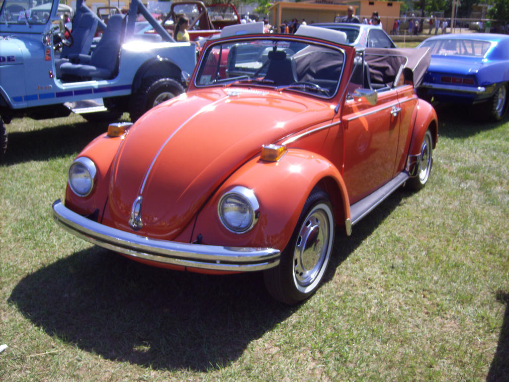 The Big Beetle Family further 37593 additionally Ref also Vw Super Beetle furthermore 1959 Vw Bug Convertible Interior Kits. on 1973 vw bug convertible