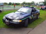 Ford Mustang SVT COBRA Cop Car