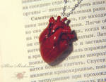 New one realistic heart from polymer clay.
