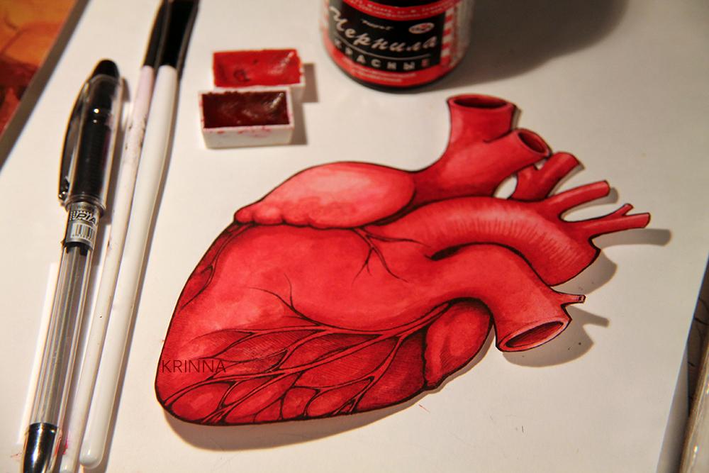 Human heart postcard. by Krinna on DeviantArt