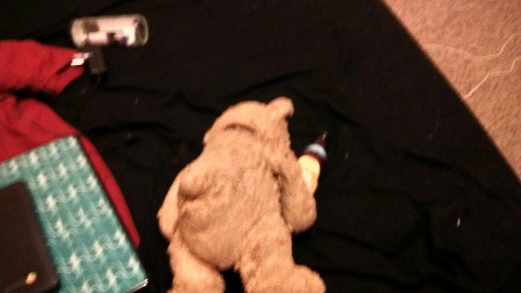 drunk teddy  by hermafrodite