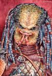 Predator by FerPeralta
