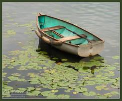 Charlotte Row Boat