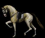 Dressage Pixel pony by HopperVal