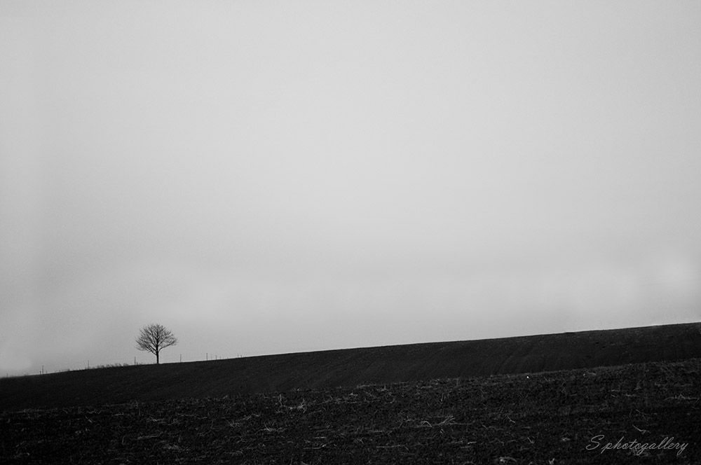 Alone by Stepek7