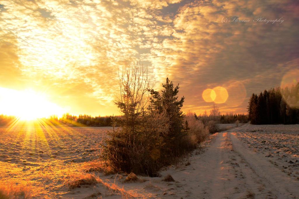Scandinavian winter 9 by Floreina-Photography
