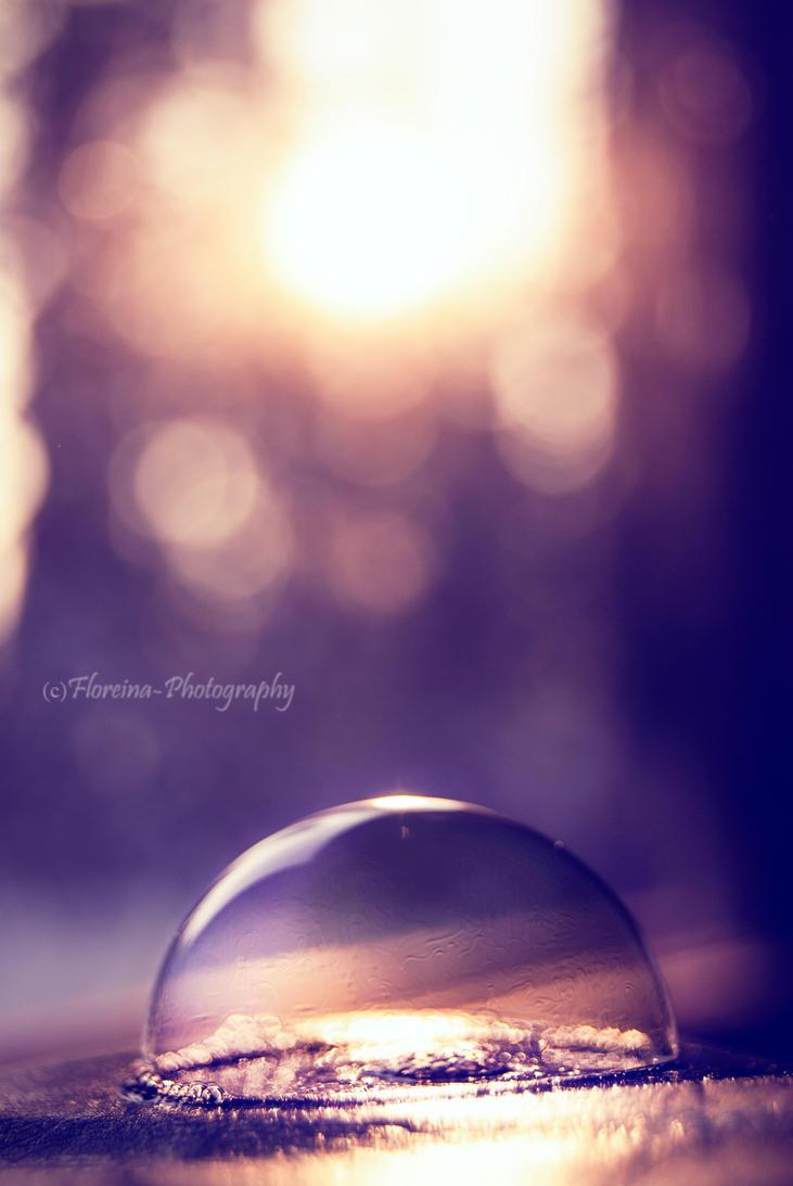 Sundome by Floreina-Photography