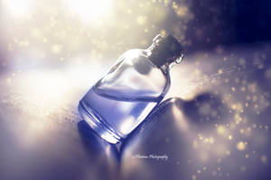 Sip to. . . by Floreina-Photography