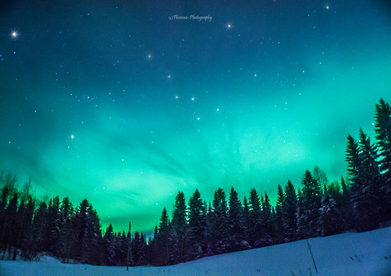 Green night by Floreina-Photography